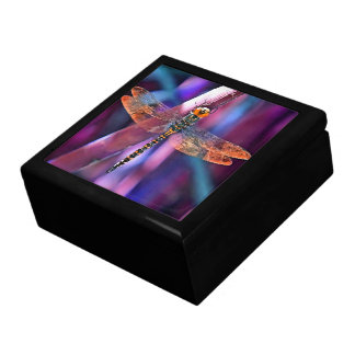 Dragonfly In Orange and Blue Gift Box