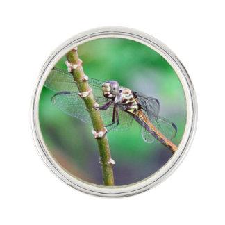 Dragonfly Lapel Pin