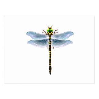 dragonfly merchandise postcard