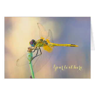 Dragonfly of Several Colors Card