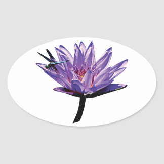 Dragonfly on Purple Water Lily Oval Sticker