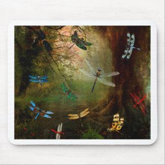 Dragonfly Playground Mouse Pad