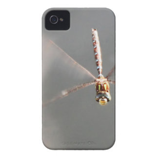 Dragonfly Smile iPhone 4 Case