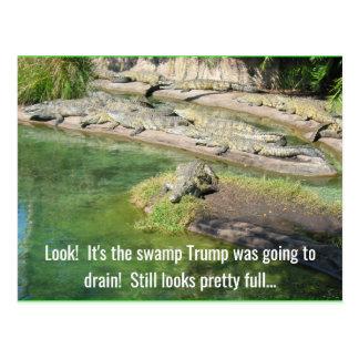 Drain the swamp postcard