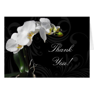 Dramatic Black and White Orchid Thank You Cards