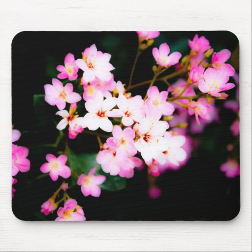 Dramatic Blossoms Mouse Pad