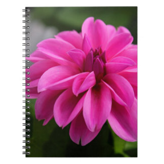 Dramatic Dahlia Spiral Notebooks