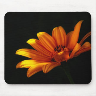 Dramatic Daisy ~ Floral Design Mouse Pad