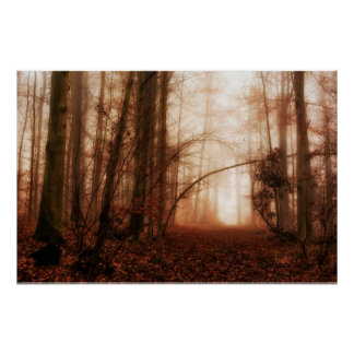 Dramatic red foggy winter snowless forest poster