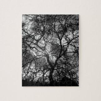 Dramatic Tree Silhouette Jigsaw Puzzle