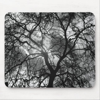 Dramatic Tree Silhouette Mouse Pad
