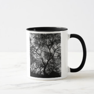 Dramatic Tree Silhouette Mug