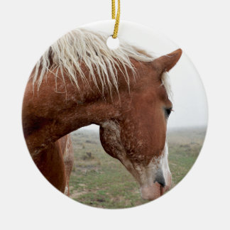 Draught   Horse in the Mist - Stunning Western Ceramic Ornament