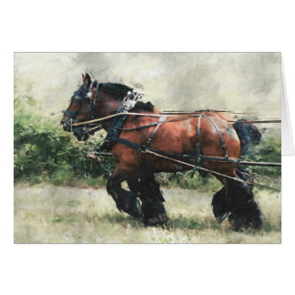 Draught   horse team birthday card