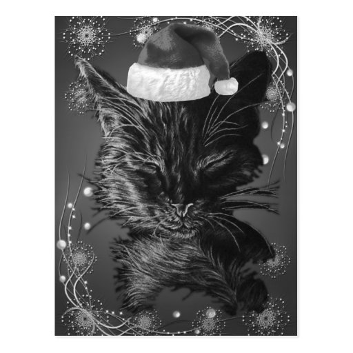 Drawing of a Sleepy Cat with a Santa Hat Postcard
