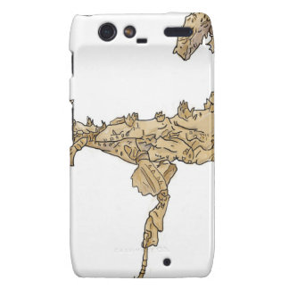 Drawing of Australian Stick Insect Droid RAZR Cover