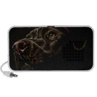 Drawing of Black Dog on Speaker