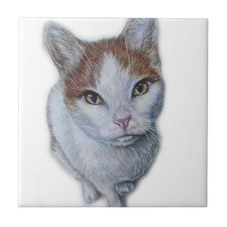 Drawing of Cat White and Orange Ceramic Tile