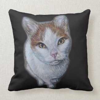 Drawing of Cat White and Orange on Pillow