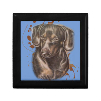 Drawing of Dachshund Dog Art and Paint Gift Box