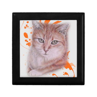 Drawing of Orange Tabby Cat and Paint Gift Box