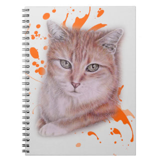 Drawing of Orange Tabby Cat and Paint Notebooks