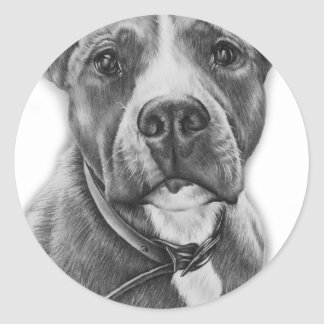 Drawing of Pit Bull Dog Animal Art Classic Round Sticker