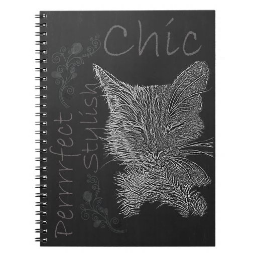 Drawing of Sleepy Cat in Chalk Note Book