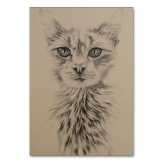 Drawing of White Cat on Table Card