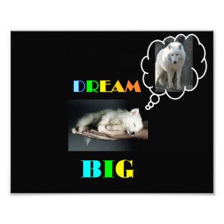 Dream Big Poster Photo Art