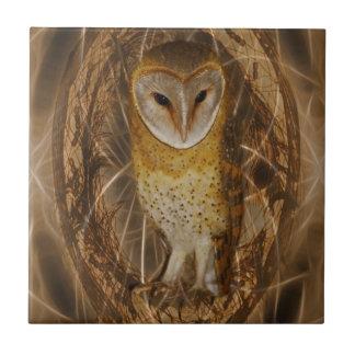 Dream catcher owl small square tile