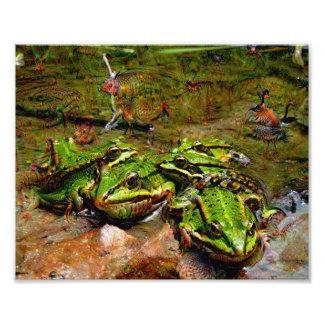 Dream Creatures, Frog, DeepDream Photograph