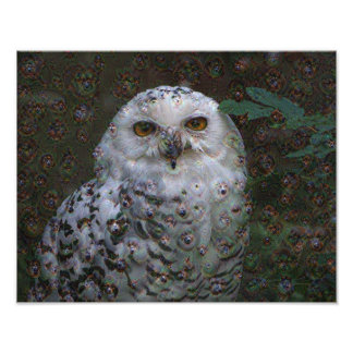 Dream Creatures, Snowy Owl, DeepDream Photograph