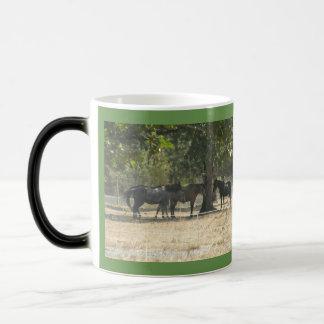 Dream Creek Ranch morphing mug