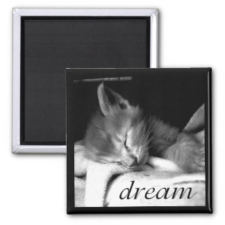 Dream Kitten - Magnet