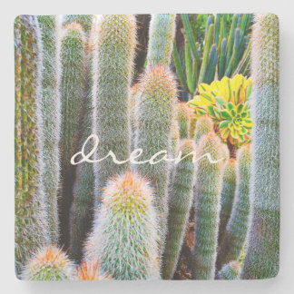 """Dream"" Quote Orange and Green Fuzzy Cacti Photo Stone Coaster"