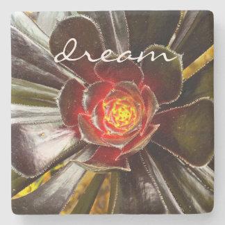 """""""Dream"""" Quote Orange & Black Cactus Close-up Photo Stone Coaster"""