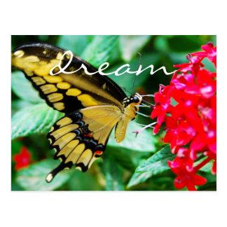 """Dream"" yellow & black butterfly photo postcard"