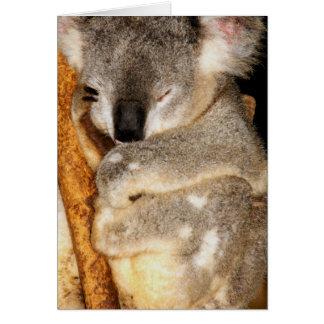 Dreaming Koala Card