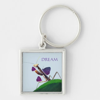 Dreaming Mantis Key Ring