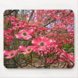 Dreaming of Pink Dogwood Blooms in Spring! Mouse Pad