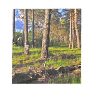 Dreaming Pine Trees into the Evening Light Notepad