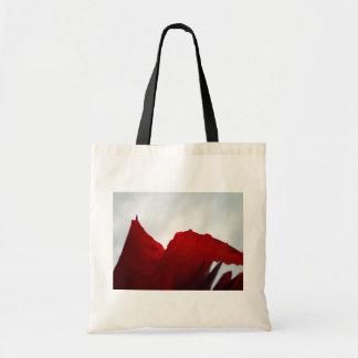 Dreams of Australia Canvas Bags
