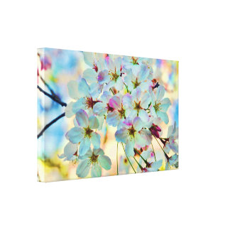 Dreams of Cherry Blossoms Stretched Canvas Print