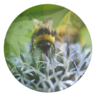 Dreams of the bee plate