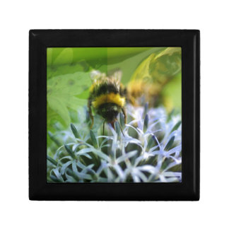 Dreams of the bee small square gift box