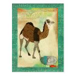 Dreamy Bronze Camel Monogram  Postcard