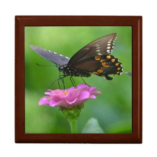 Dreamy Butterfly Jewelry Box