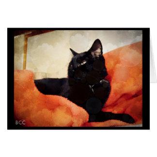 Dreamy Cat Blank Note Card