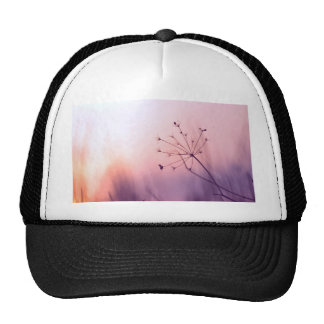 dreamy girly floral nature photo lovely art decor mesh hats